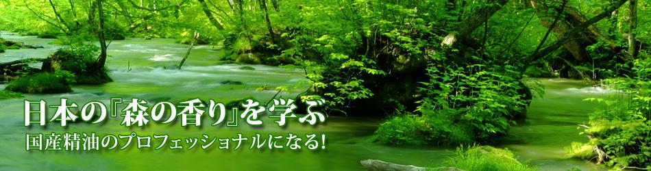 日本の森の香りを学ぶ 国産精油のプロフェッショナルになる
