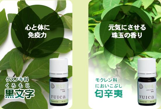 yuica01