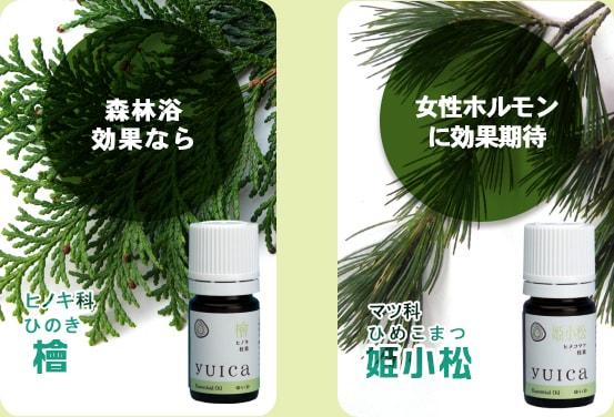 yuica02